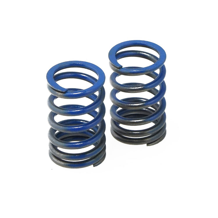 TDR Valve Spring Racing New Japan Supra